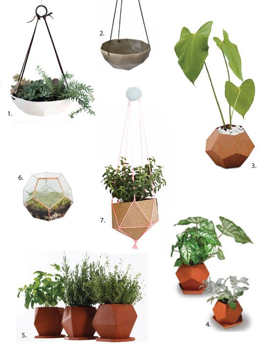 151 best easy being green images on pinterest indoor for Indoor gardening trends