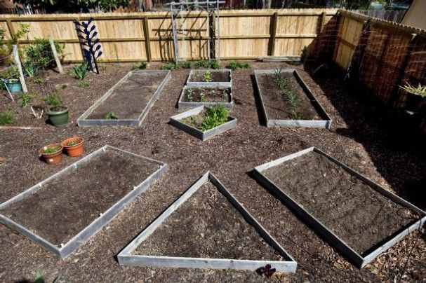 The 50 best images about Potager Garden on Pinterest