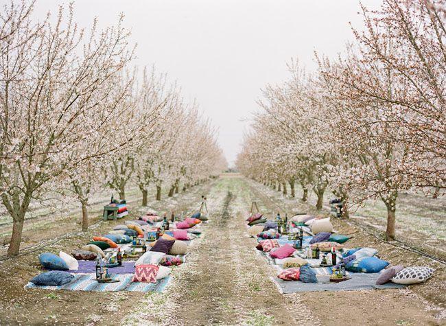 Una boda íntima en un campo de almendros en flor. #boda al aire libre, #boda intima, #outdoor weddings. Via: Blog Ana Pla. Interiorismo y Decoracion.