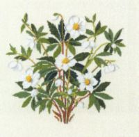 "Gallery.ru / natalytretyak - Альбом ""30-3888: Christmas Rose"""