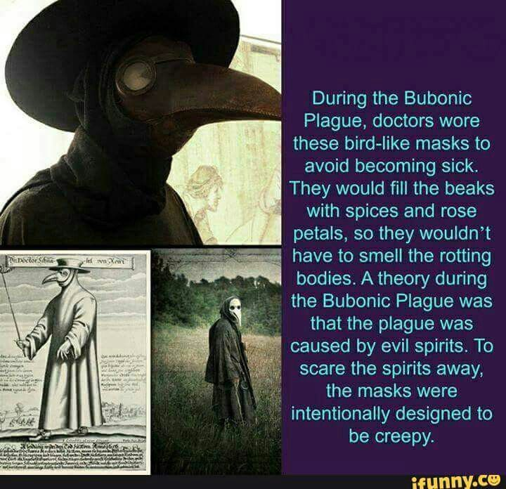 an introduction and history of the bubonic plague Approx 40 % of european population died in the middle of 15th century, called black death, which is the most famous and scarier plague in history just say what i mentioned, 40 % died of eu people, apply this on england, but the population rose by 60% within 150 years in english kingdom due to better living conditions and economics - trade.