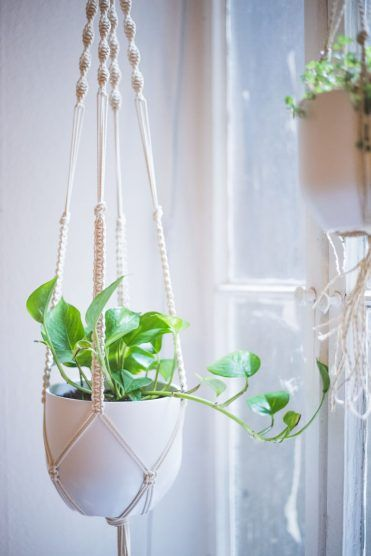 Macrame Plant Hanger Tutorial and other amazing macrame projects!