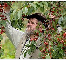 Как в суровом климате выращивать теплолюбивые растения и фруктовые деревья