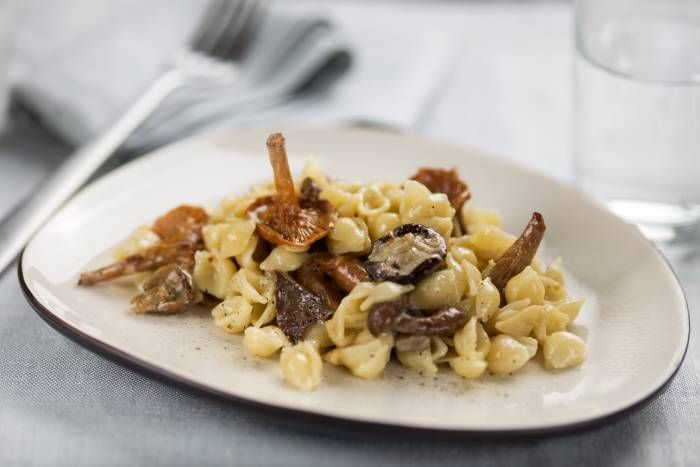 Orecchiette ai funghi #Star #ricette #orecchiette #funghi #recipes #star
