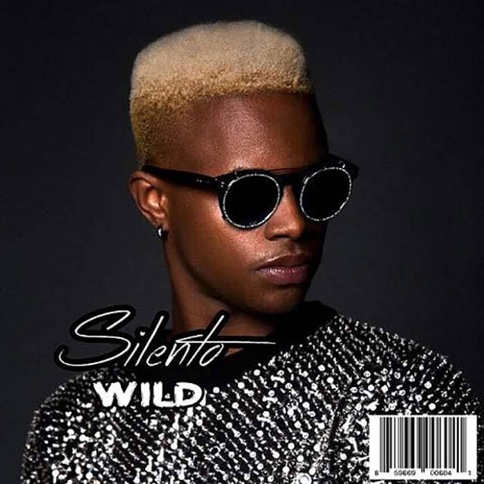remixes: Silento - Wild.  Sebastian Perez and Wideboys remixes https://to.drrtyr.mx/2kqSjXB  #silento #SebastianPerez #Wideboys #music #dancemusic #housemusic #edm #wav #dj #remix #remixes #danceremixes #dirrtyremixes