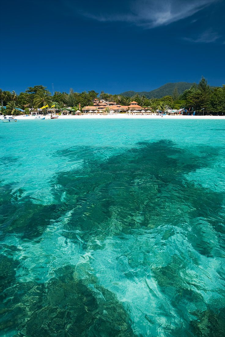 Coral silhouettes mark the bottom of the crystal clear water of Pattaya beach looking onto Sita Resort. - Ko Lipe, Thailand