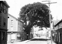 New Bedford Streets; A Piece of Americana: Elm Street – New Bedford ...