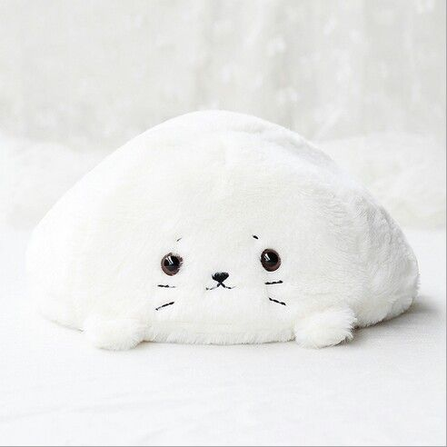 #seal #sweet