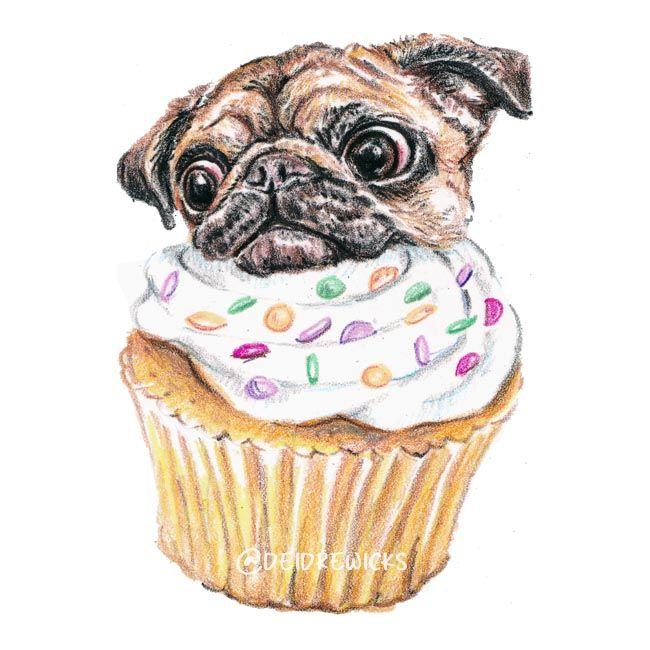 Pugcake crayon art / Deidre Wicks