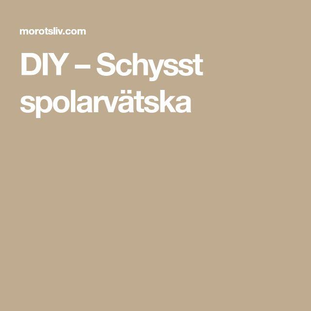 DIY – Schysst spolarvätska