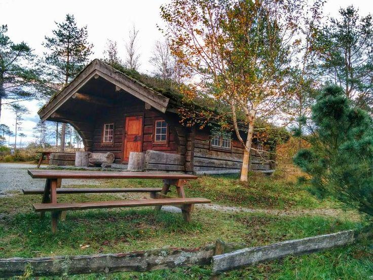 Cabin in Norway
