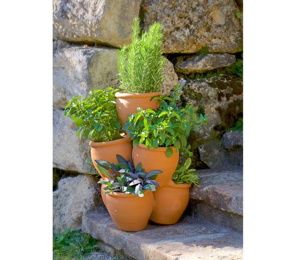 Terrakotta Krauter Etagere Fur Den Garten O 35 X 47 Cm Pflanzen