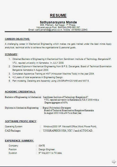 Formats For A Resume Resume Tips No Experience Professional Resume Writing Service Resume Writing Services