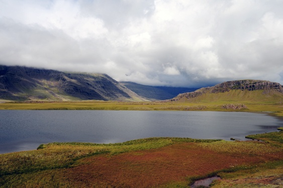Iceland, Route 1, summer.