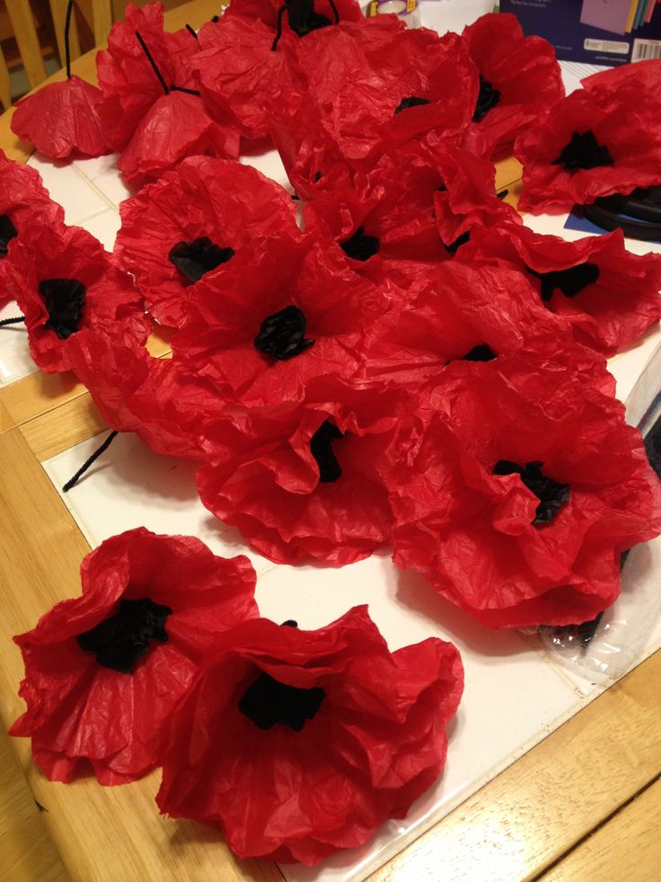 Tissue Paper poppies cut 3 large red circles, 3 small black circles. Stack them. Put hole in center run black or green pipe cleaner. Crinkle up unfurl, voile!
