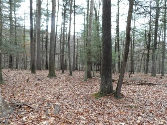 3.86 Acres lot with Well and Septic near Berkeley Springs. Building site has been cleared for your perfect vacation cabin or permanent residence. Roads are well maintained throughout the subdivision. Year round stream runs at the bottom of the property. Very level with multiple areas to build and garden. Come see this land before it gets away