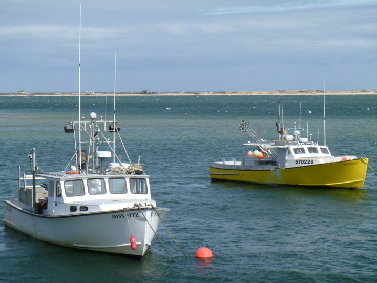 1000 images about cape cod on pinterest cape cod bay for Cape cod fishing