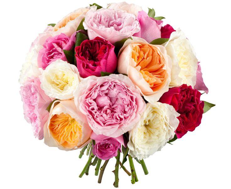 La Rose Symbole même de l'amour.  En fonction des couleurs, elle symbolise l'amour pur et l'innocence (roses blanches) ; le mystère, la patience et l'espoir éternel (bleues), la jalousie et l'infidélité (jaunes), l'amour tendre et véritable de l'amitié (rose) ou encore la passion (rouges).  Un bouquet de douze roses rouges… la demande en mariage !