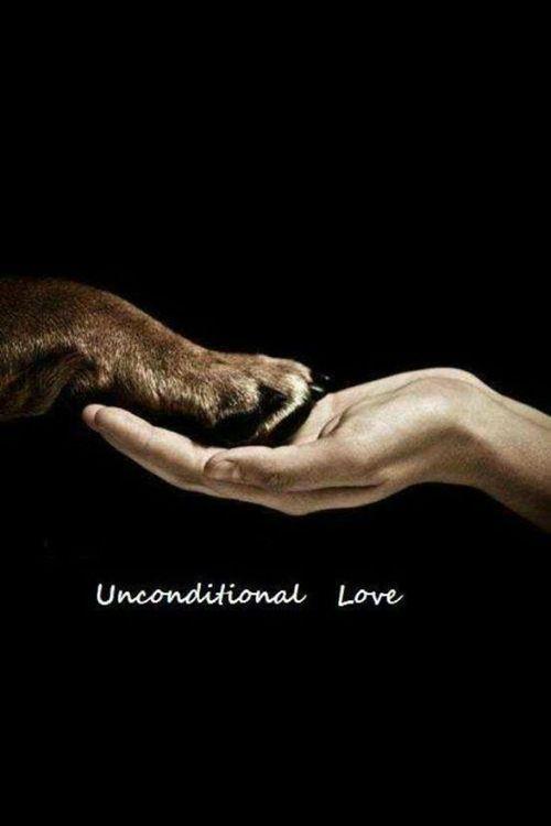 <3unconditional love<3