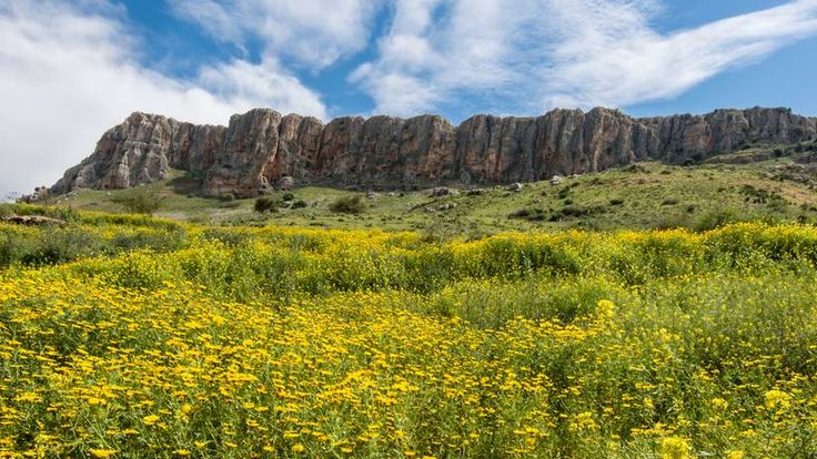 Climb the cliffs of Arbel National Park Rock climbing, hiking, base jumping and epic views – all in one gorgeous park.