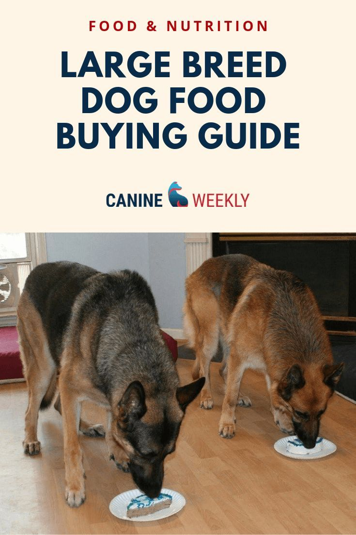 11 Best Large Breed Dog Food Picks In 2020 Canine Weekly Large Dog Breeds Large Breed Dog Food Dog Food Recipes
