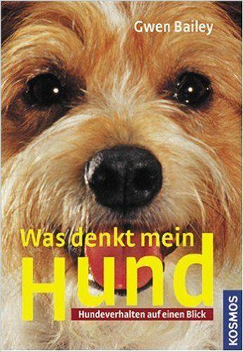 38 besten hundetraining / hundeschule lana-film® bilder auf