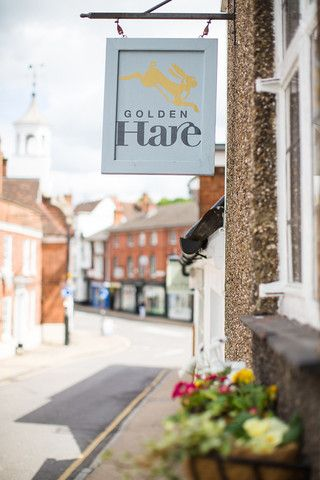 Gallery Photoshoot | Golden Hare