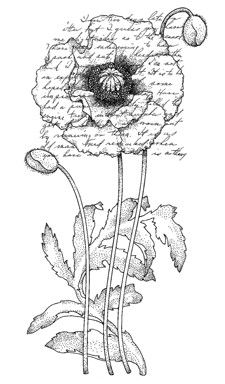 Penny Black Wood Stamp - Poppy Poem- just click on image here and save!