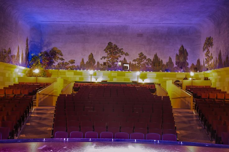 """One of the few remaining """"atmospheric"""" theatres in North America."""