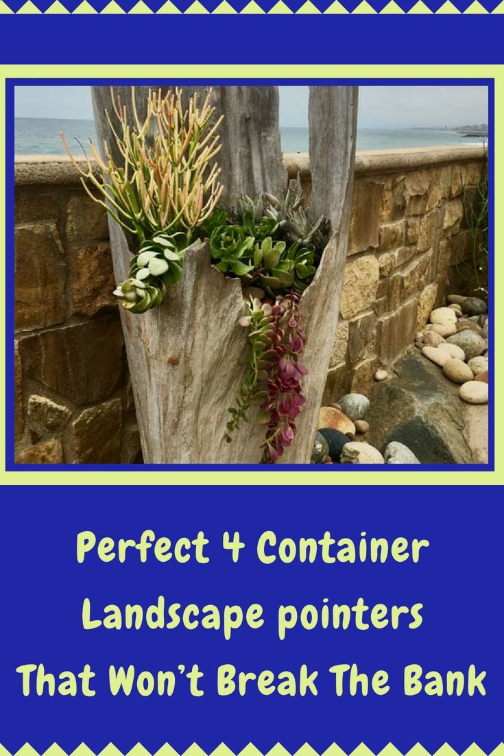 Great low cost backyard landscape ideas that youull love easy