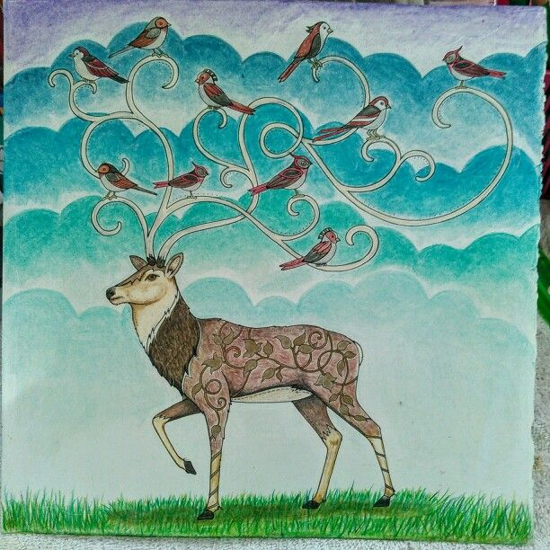EF Deer Coloring BooksColouringJohanna BasfordComic IllustrationsArt TherapyColored PencilsDeerEnchanted ForestOcean