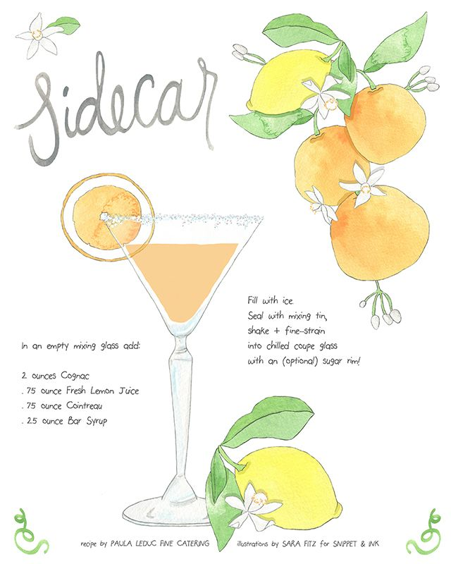 Sidecar Classic Cocktail Recipe with Illustration from Sara Fitz! Snippet & Ink