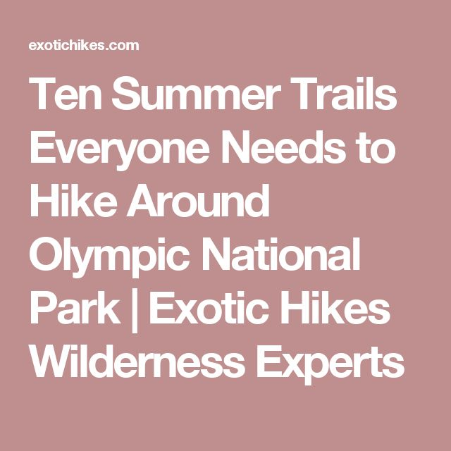 Ten Summer Trails Everyone Needs to Hike Around Olympic National Park | Exotic Hikes Wilderness Experts