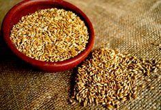 EL ALPISTE: CURA LA DIABETES, ADELGAZA RÁPIDAMENTE, ERRADICA LA GRASA DE VENAS Y ARTERIAS TAPADAS, DESINFLAMA ÓRGANOS, CURA LA HIPERTENSIÓN, LA GASTRITIS Y MAS!. El alpiste es una de las semillas más poderosas sobre la Tierra ; su capacidad de recarga enzimática es inmensa y su contenido proteico es aún mayor. Un vaso de leche enzimática de alpiste tiene más proteína que dos o tres kilogramos de carne, pero con aminoácidos estables, esto es, que viajan de una manera segura e…