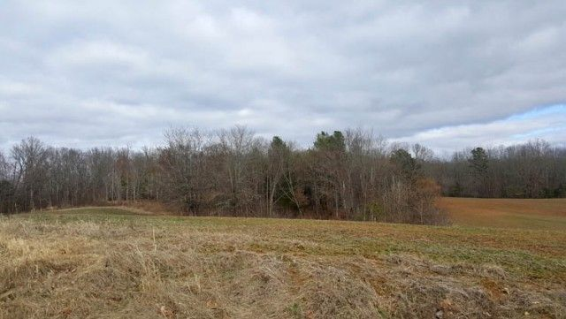ABSOLUTE LAND AUCTION RAIN OR SHINE Tuesday, March 21, 2017, at 5:00 pm 1,070 ACRES CROPLAND, TIMBERLAND, BUILDING LOTS, MINI-FARMS, COMMERCIAL LAND, SHOP Offering in 31 Tracts ranging in size from 1 Acre to 180 Acres, Any Combinations and As A Whole Location: Skullbone Community Center, 3 Shades Bridge Rd, Bradford, TN 38316 Actual location for the Live Auction and Online Bidding is next door to Skullbone Store at the Skullbone Community Center, 3 Shades Bridge Road, in Bradford, TN 38316.
