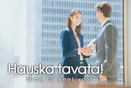 Hauska tavata! ~ Nice to meet you *As a child, I learned that hauska meant happy, as in Hauska Joulua=Happy Christmas, so this could also be Happy to meet you, I guess?)