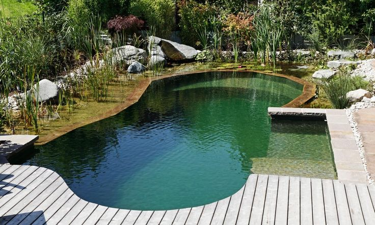 A Swimming Hole in Your Backyard?! - Gallery - DuJour