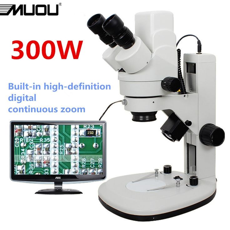 intel play qx3 microscope software download