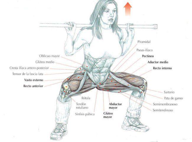 Rutina para trabajar los glúteos, las piernas, los abdominales y la espalda en una sola sesión | Sentirse bien es facilisimo.com