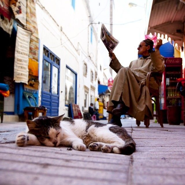 Through Your Lens: Images From The Streets Of Morocco