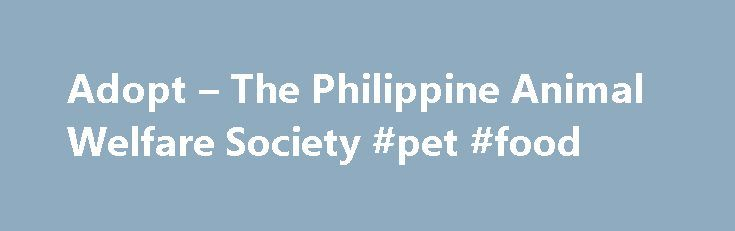 Adopt – The Philippine Animal Welfare Society #pet #food http://pet.remmont.com/adopt-the-philippine-animal-welfare-society-pet-food/  MAKE ADOPTION YOUR FIRST OPTION.By adopting, you are giving our homeless animals a chancefor a good life, a chance to be loved and to love back. Thank you for your interest in adopting. By simply reading this website, you are already showing the animals of PAWS that you care. The animals of PAWS are internet savvy and are monitoring this website's traffic…