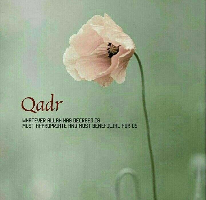 #Qadr #Alhumdulillah #For #Islam #Muslim
