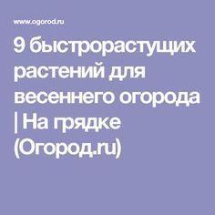9 быстрорастущих растений для весеннего огорода | На грядке (Огород.ru)
