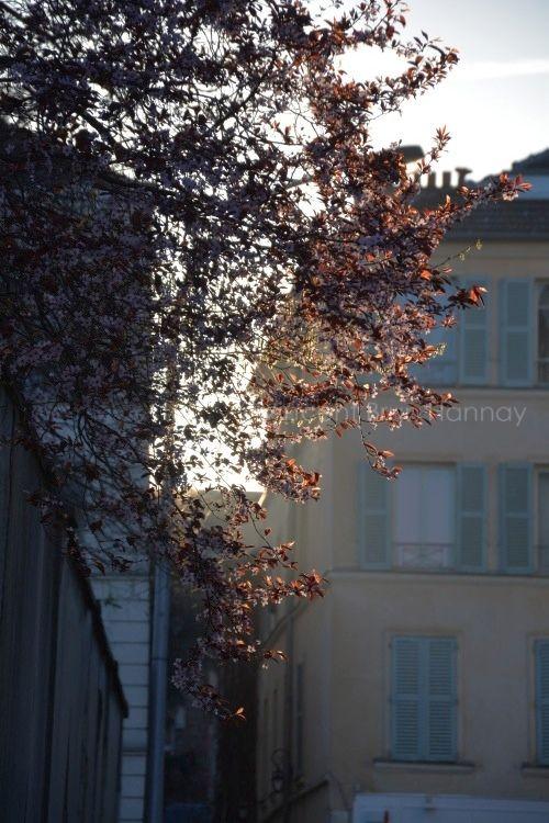 Boulogne ©Vincent Brun Hannay