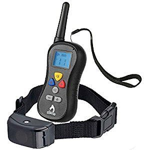 Patpet PTS-008A 330 Yard Rainproof Remote Shock Collar for Taining Dog Separate Buttons for Each Correction E Collar with Beep/16 Levels of Vbration and Shock Anti Bark Collar : Patpet : Pet Supplies