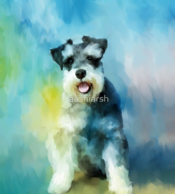 #MiniatureSchnauzer #Dog Water Color #Art #Painting #watercolor #doglovers #giftideas #dogloversgifts #christmasgiftideas