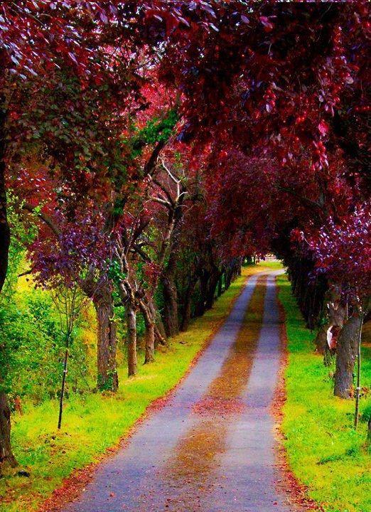 Hermosa Asturias
