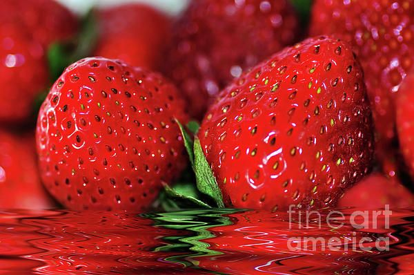 #Strawberries #Afloat by #Kaye_Menner #Photography Quality Prints Cards Products at: http://kaye-menner.pixels.com/featured/strawberries-afloat-by-kaye-menner-kaye-menner.html