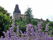Die Burg Bentheim gehört zu den schönsten Ausflugszielen im Münsterland. Ganz im Norden der Region thront die mächtige Burg über Bad Bentheim. Die ersten Erwähnungen zur Burg Bentheim lassen bis auf  Jahr 1050 zurückverfolgen. Verschiedene bewaffnete Auseinandersetzungen prägten in den folgenden Jahren die Geschichte der Burg. Um 1160 wurden die Burgmauern, der Turm der Katharinenkirche und der Pulverturm gebaut. Viele Bereiche zeigen heute noch das mittelalterliche Gesicht der Burg.