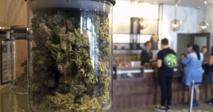 Pennsylvania senator says he used medical marijuana before state legalized drug - PhillyVoice.com